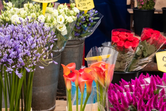 Fresh flowers are abundant all across the city – there were several stands with very inexpensive selections in the Albert Cuyp Market, Amsterdam, The Netherlands