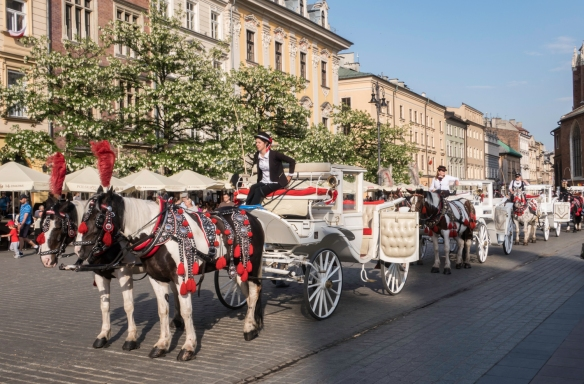 Horse-drawn carriages are very popular with tourists throughout the city – here they are lined up outside the Main Market Square [Polish- Rynek Glówny], Kraków, Poland