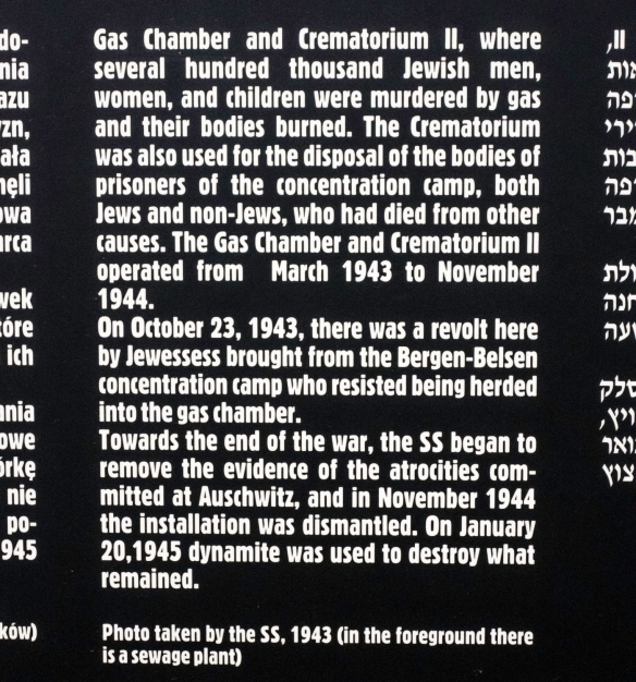 Text on sign from Auschwitz Museum, Birkenau, Oświęcim, Poland (#11)