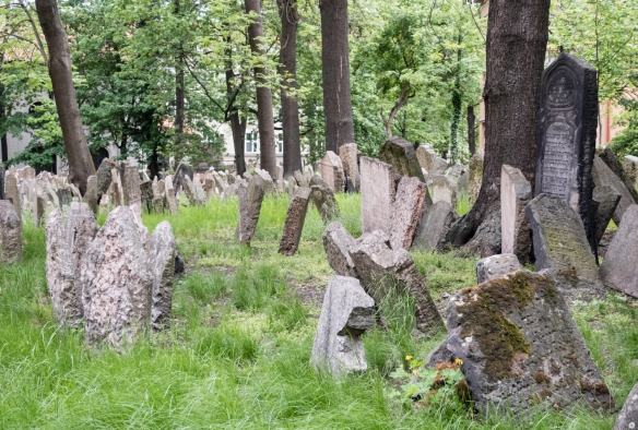 The Old Jewish Cemetery, Prague, Czech Republic, is adjacent to the restored Pinkas Synagogue; founded in the 15th century, the Old Jewish Cemetery is among the oldest surviving Jewish b
