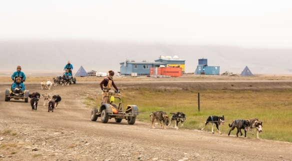 A popular tourist attraction is visiting the husky dog kennels and then going for a sled ride on the outskirts of Longyearbyen, Spitsbergen Island, Svalbard; we saw these sleds as we hik