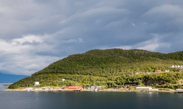 Across from the harbor we hiked trough the forest up the hill know as Gangsåstoppen, Harstad, Norway