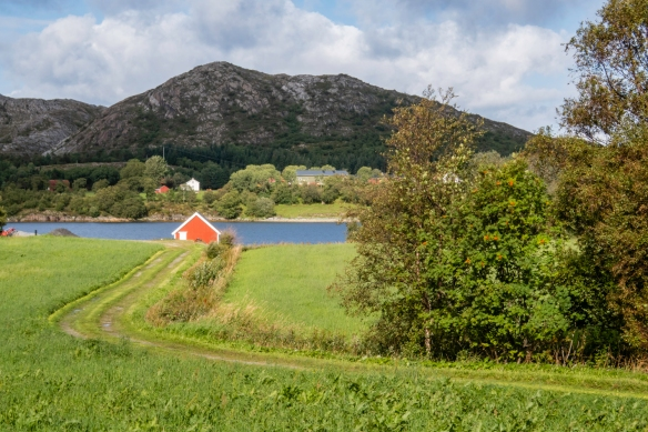 Farmhouses set against the mountains adjacent to Torghatten, Trollfiell Geopark, Brønnøysund, Norway