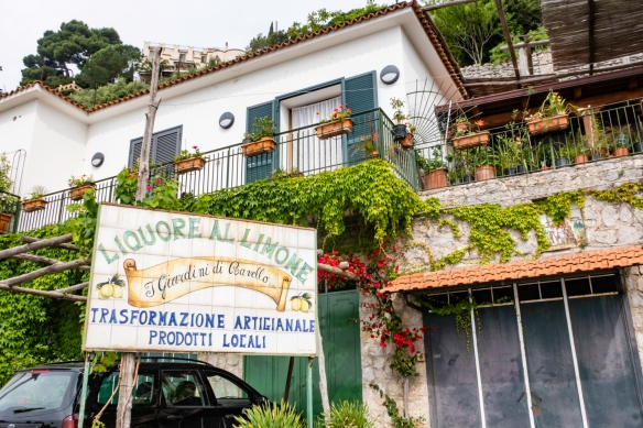 Hiking the Amalfi Coast, Italy, #4 -- the Amalfi coast is famed for its production of Limoncello liqueur and the area is a known cultivator of lemons
