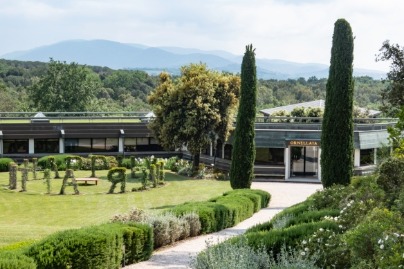 In 1981, Marchese Lodovico Antinori breathed new life into Tenuta dell' Ornellaia and planted the first French varietal grape vines in Bolgheri, which lies in the heart of Tuscany's coas