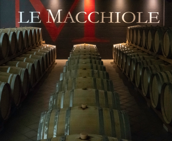 "Le Macchiole (winery) is in Bolgheri, Italy, on the Etruscan Coast -- ""in this magical place, where rolling hills are blanketed by forest, where vineyards and olive trees meet with the"