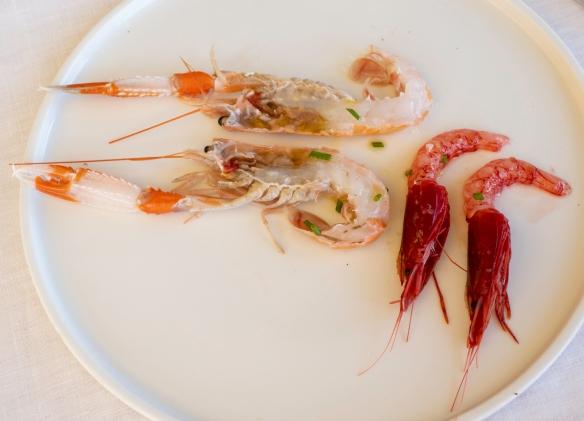 Luncheon at Acqua Pazza, Ponza, Italy #3
