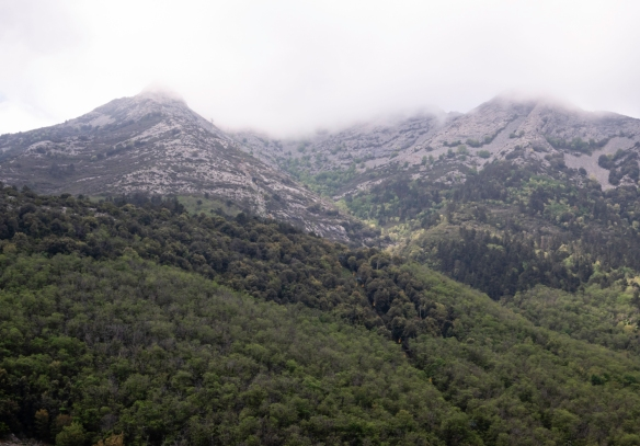 The slopes of Elba's highest peak, Monte Capanne