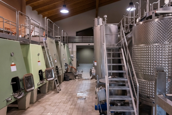 The winery production uses very contemporary, state-of-the-art equipment at Le Macchiole (winery), Bolgheri, Italy