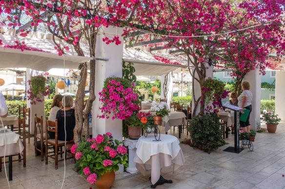 With a group of friends we had a tasty, typical Greek cuisine luncheon at the Bougainville Restaurant (named for all the flowering bougainvillea plants), Kerkyra, Corfu, Greece