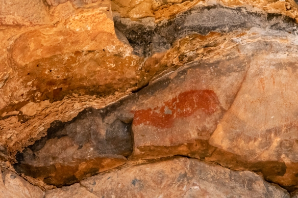 A jackal – painted 2,000 to 2,600 years ago, Bushman paintings in NamibRand Nature Reserve, Namibia