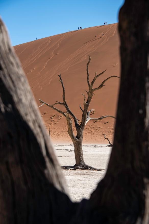 Deadvlei, Namibia, #11