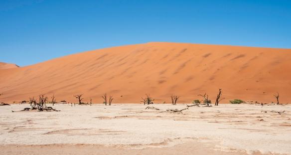 Deadvlei, Namibia, #13
