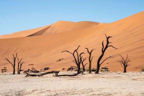 Deadvlei, Namibia, #4