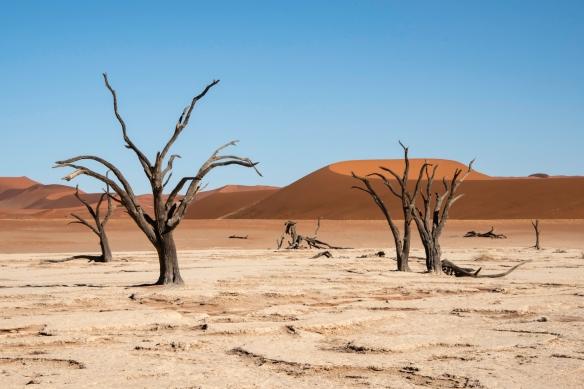 Deadvlei, Namibia, #9