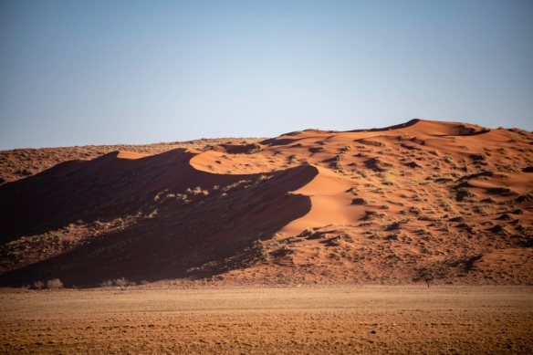 Red sand dunes in NamibRand Nature Reserve, near Sossusvlei, Namibia
