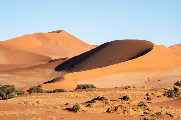 "Sand Dunes at Sunrise, Sossusvlei, Namibia, #11 – a close-up of ""Big Mama"" (see above, #10)"
