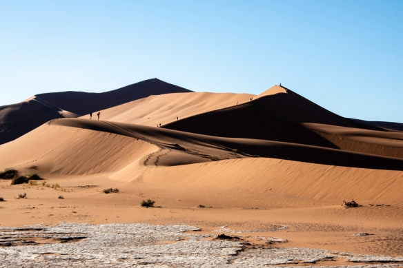 Sand Dunes at Sunrise, Sossusvlei, Namibia, #12 -- Big Daddy is the highest dune in the Sossusvlei area, at about 325 meters [1,066 feet], located past Sossusvlei proper, near Deadvlei,