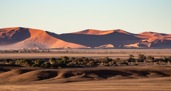 Sand Dunes at Sunrise, Sossusvlei, Namibia, #2 -- shortly after sunrise, the shadows were quite long