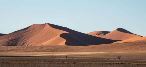 Sand Dunes at Sunrise, Sossusvlei, Namibia, #5
