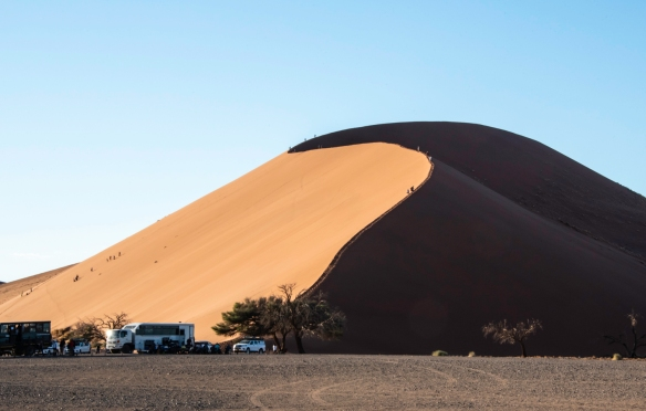 Sand Dunes at Sunrise, Sossusvlei, Namibia, #7 – this is Dune 45, so called because it lies 45 km (28 miles) past the Sesriem gate to the national park on the road to Sossusvlei; it is