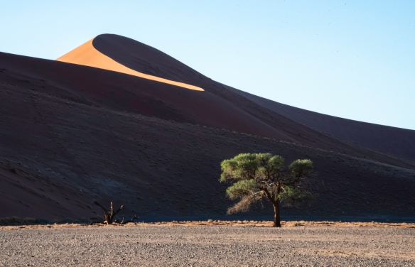 Sand Dunes at Sunrise, Sossusvlei, Namibia, #9