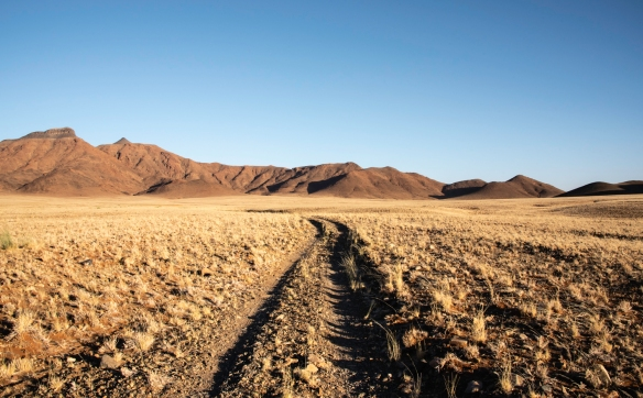 The road to the petrified dunes in NamibRand Nature Reserve, near Sossusvlei, Namibia
