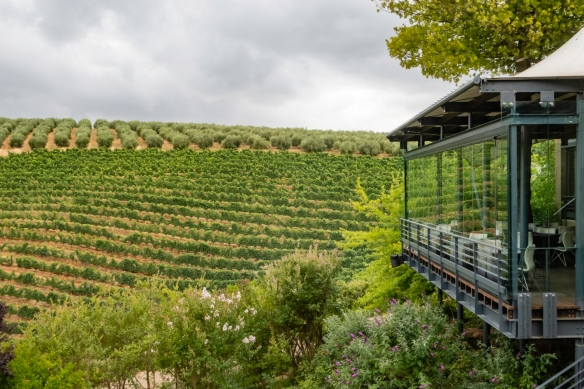 The terrace room of the Tokara Restaurant at Tokara Wine Estate overlooks the vineyards on the Simonsberg Mountains, Stellenbosch, South Africa