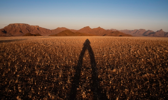 Your blogger-photographer_s shadow at sunset on at the petrified dunes in NamibRand Nature Reserve, near Sossusvlei, Namibia