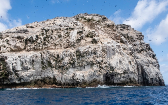Boatswain Bird Island, just off the east coast of Ascension in the South Atlantic Ocean is a nature reserve and offers great opportunities for bird lovers