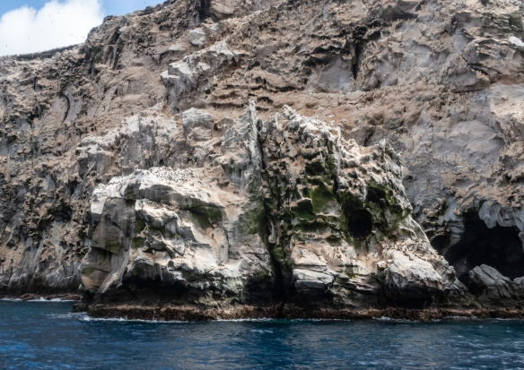 Rock formations serving as nesting grounds, Boatswain Island, Ascension Island