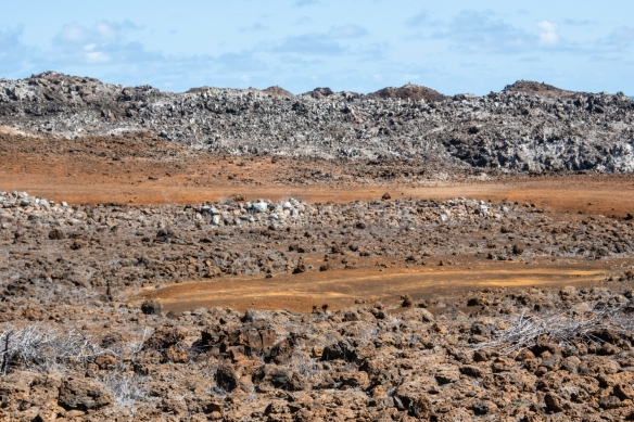 The area we visited is named Mars Bay, not for the dark red earth above the site which resembles the red planet, but for a scientific expedition carried out on the site in 1877 to mark t