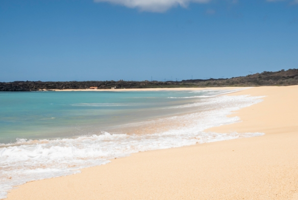 This beach, just to the west of Georgetown on the western coast of Ascension Island, is the site of the annual return of thousands of Brazilian green turtles who come ashore and bury the