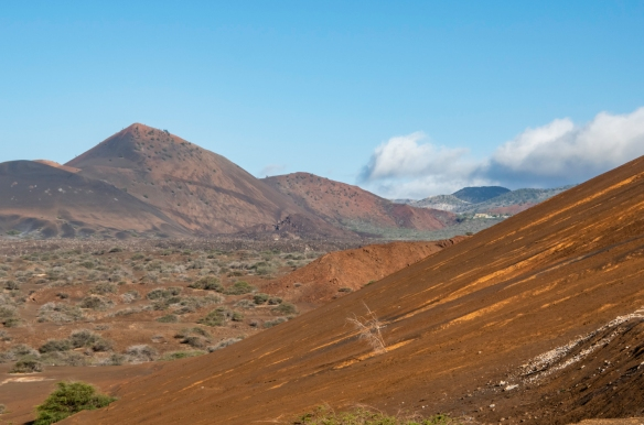 This view of the terrain at the center of Ascension Island reminded some of us of the inside of the crater of Haleakala on Maui and others felt that it might be the surface of planet Mar