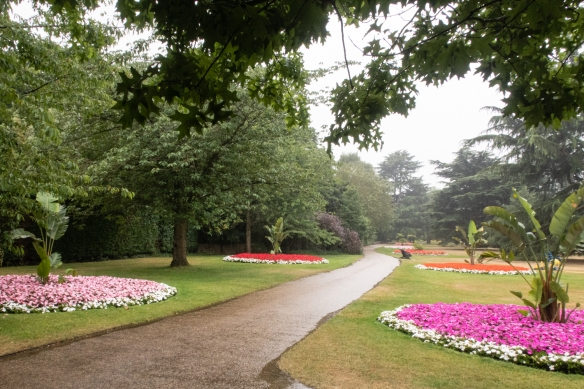 We enjoyed the peace and quiet and beautiful plantings on our rainy walk through Greenwich Royal Park; Greenwich, London, England
