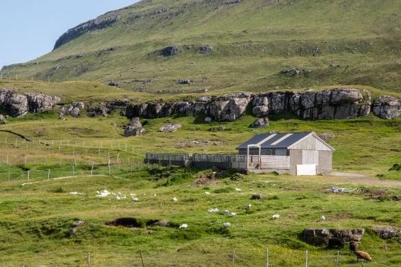A farmer's barn on the island of Eysturoy, Faroe Islands