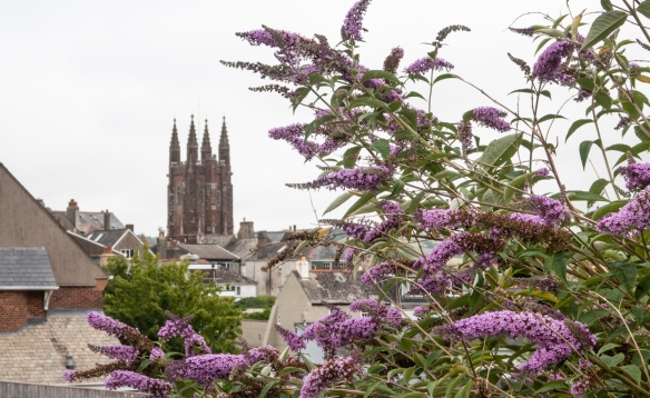 Across the skyline of the town, we couldn't miss the steeple of the Church of St. Mary the Virgin, Totnes, England