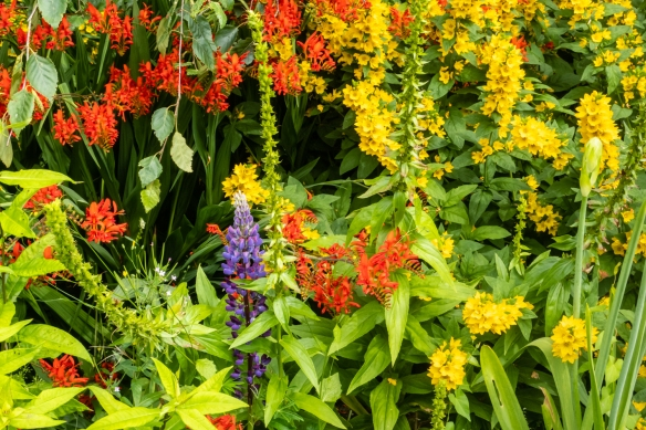 County Meath Country House's Gardens #11, Slane, Republic of Ireland