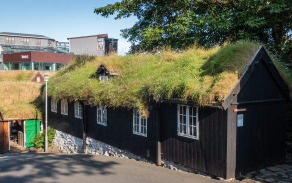"Due to the extremely high winds (all year long), older homes in the Faroe Islands had sod roofs (locally referred to as ""turf-roofed""), as the weight and vegetation were strong enough to avoid having the roof (e.g., wood, tiles, etc.) blown off"