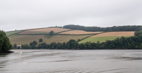 Farms occupy most of the rolling hills along the River Dart between Dartmouth and Totnes, England