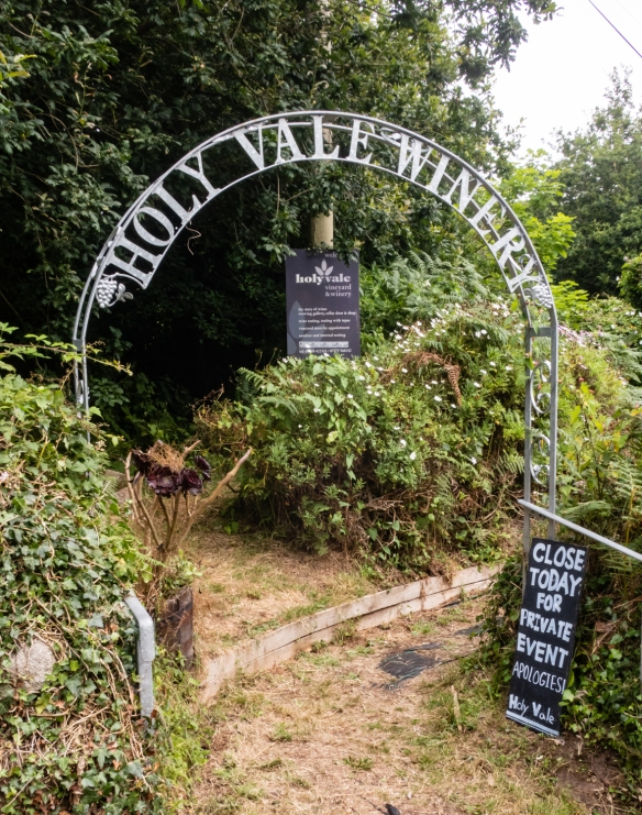 Holy Vale Winery's vineyard was planted in the spring of 2009 by local resident and hotelier Robert Francis who wanted to pioneer the production of good quality wines on the Isles of Scilly, United Kingdom