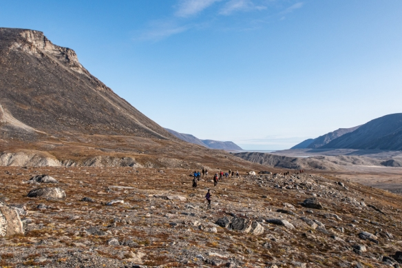 Our coastal hike took us over varied terrain, with the hillside littered with large stones dragged down by glaciers (moraine) and below that tundra and bogs and pools of water that were difficult to walk through; Feacham Bay, Buchan Gulf