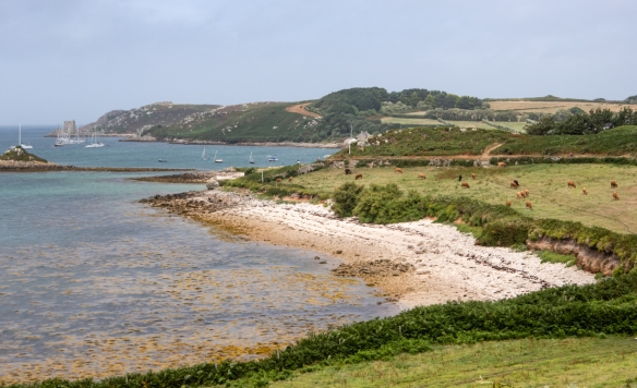 The family-owned Tresco Island is the second-biggest island of the Isles of Scilly, England, United Kingdom, located in the Celtic Sea section of the Atlantic Ocean, southwest of Cornwall, England