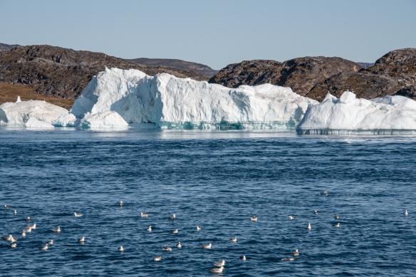 The Ilulissat Icefjord, Ilulissat, Greenland #1