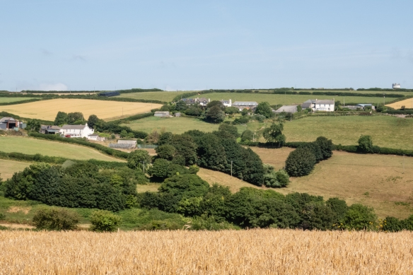 The third leg of our walk took us through rolling hills with large farms, Dartmouth, South Devon, England