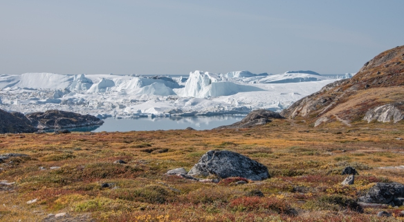 We hiked through Sermermiut, a beautiful valley overlooking the Ilulissat Icefjord, coming to the shoreline of the Icefjord where we had the opportunity to marvel at the fjord completely filled with icebergs of varying sizes