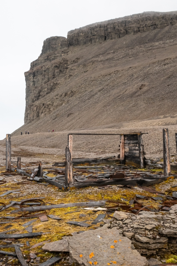 A view of the Northumberland House set against the high cliff behind the beach, Beechey Island, Nunavut, Canada