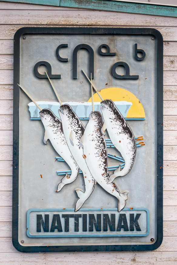 "Narwhal whales decorate a plaque outside the community library, Pond Inlet, Baffin Island, Nunavut, Canada [The narwhal, or narwhale, is a medium-sized toothed whale that possesses a large ""tusk"" from a protruding canine tooth.]"