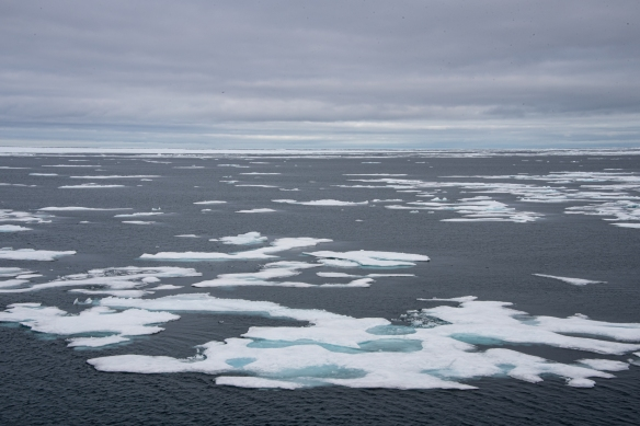 Our first encounter with pack ice was in Peel Sound on our Northwest Passage journey through Nunavut Territory, Canada
