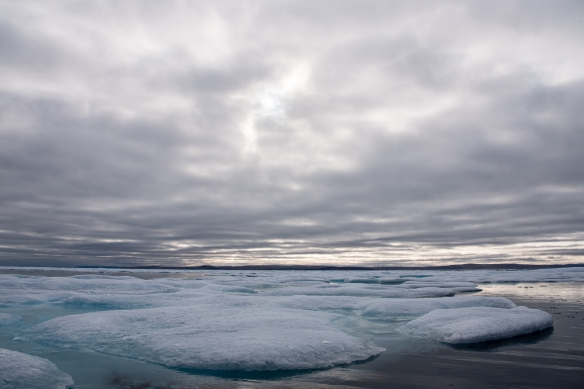 Pack ice #1 in Peel Sound, Northwest Passage, Nunavut, Canada